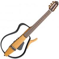 Silent гітари
